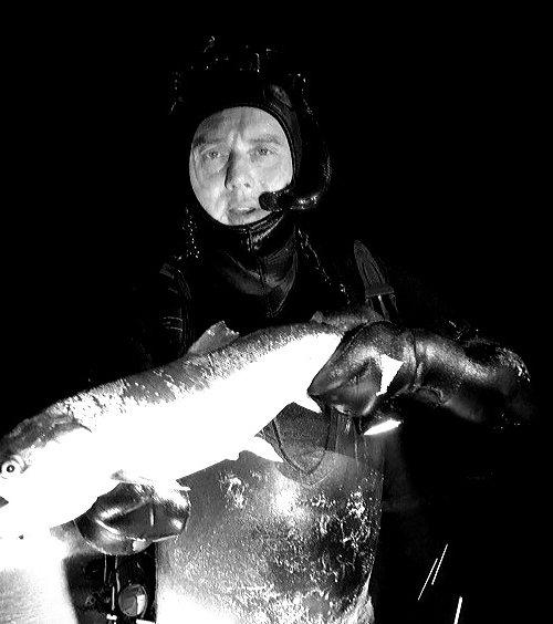 Smuk ø – Havørred fanget af JessB.Nielsen ved  Bornholm  om natten