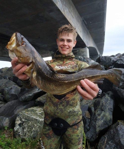 Torsk fanget af Dani459e ved Nyborg