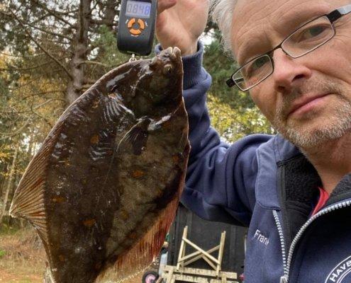 PR Rødspætte – Rødspætte fanget af frankgellert ved Sjællands Odde