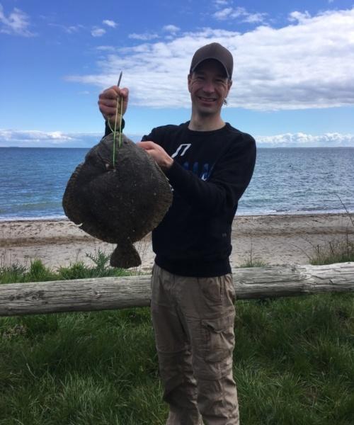 Pighvar – Pighvar fanget af nicolaikjaer ved Langeland øst