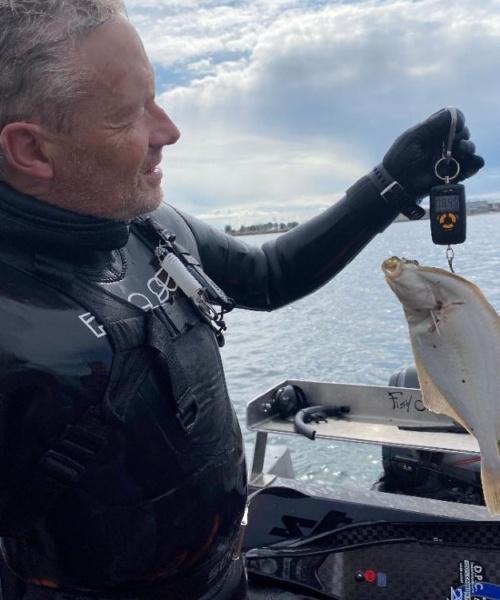 Masser af-fladfisk2 – Skrubbe fanget af frankgellert ved Helsingør Øresund