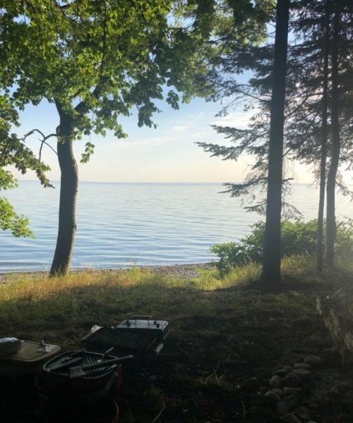Morgen dyk – Havørred fanget af lars-christensen ved Nørreskoven Als