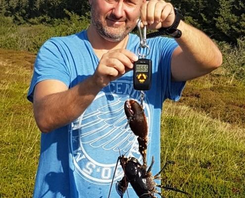 Med Frank – Hummer fanget af Tom ivø ved Limfjord