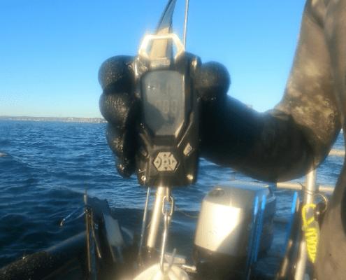 Kæmpe succes – Torsk fanget af Tom ivø ved Øresund