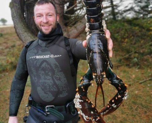 Håber forhold – Hummer fanget af Hrpaaske83 ved Limfjorden
