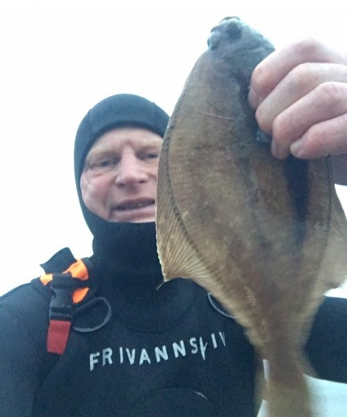 Mørkt dyk – Ising fanget af knud-munk ved Sydfyn