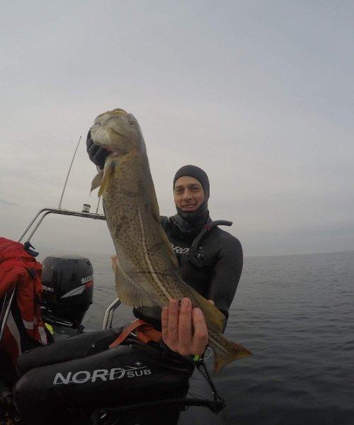 Årets første – Torsk fanget af Øster ved Køge Bugt