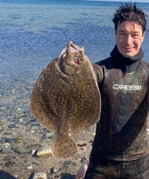 Eftermiddags dyk – Pighvar fanget af nicolaikjaer ved Syddanmark
