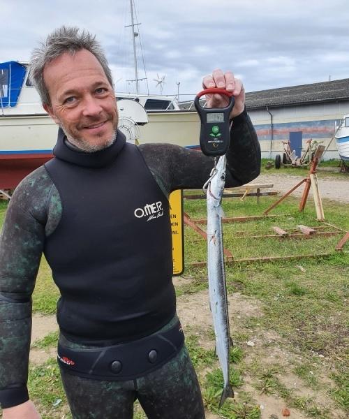 Bulls Eye – Hornfisk fanget af Peter Olsen ved Langeland