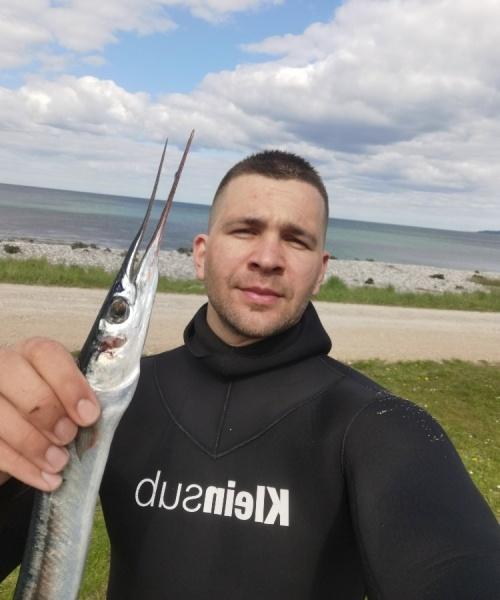 Hornfisk – Hornfisk fanget af timur-gundal ved Djursland