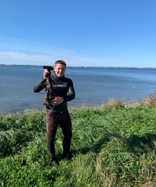 180 dyk – Hummer fanget af frederik-markussen ved Mors