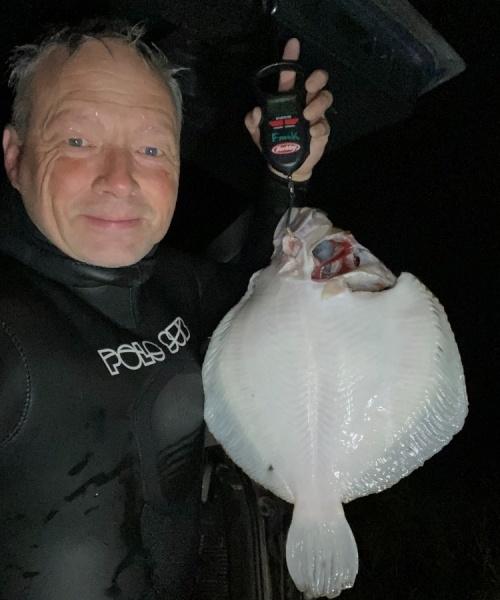 Pighvar fanget af frankgellert ved Vest Sjælland
